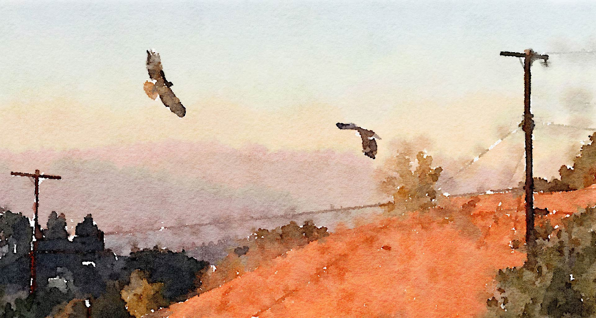 watercolor of hawks soaring over Kite Hill by Dan Blank